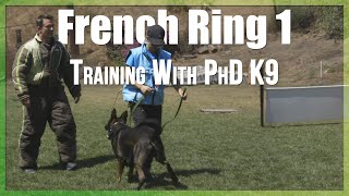 Ring 1 Training | French Ring Protection Dog Sport