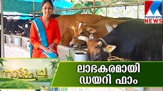 DairyFarm A Profitable business  | Manorama News