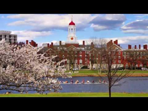 Harvard university | online education