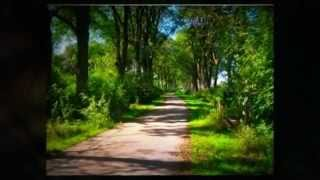 Health Insurance For Self Employed Business Owners In Oak Brook Illinois 60523 Video