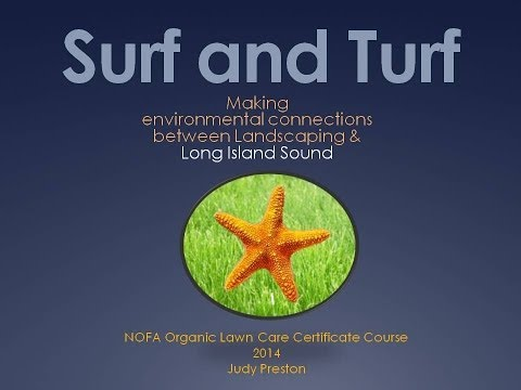 Surf and Turf - Making Environmental Connections Between Landscaping and Long Island Sound