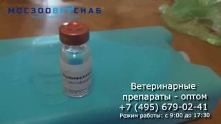 Ветеринарні препарати. Полиферрин-А. Інструкція. Відео