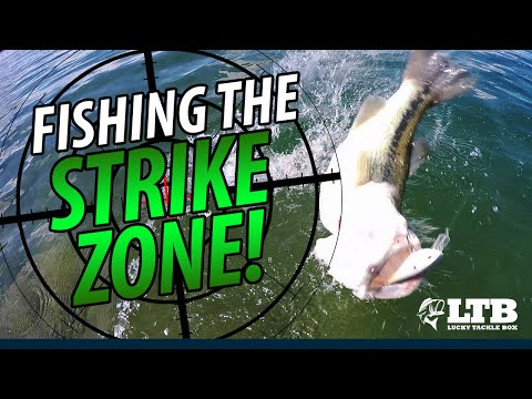 How To Fish The Strike Zone: Lucky Tackle Box Tips