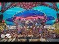 Ace Ventura @ Boom Festival 2018