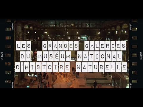 Visite insolite à Paris : les Grandes Galeries du Museum national d'Histoire naturelle