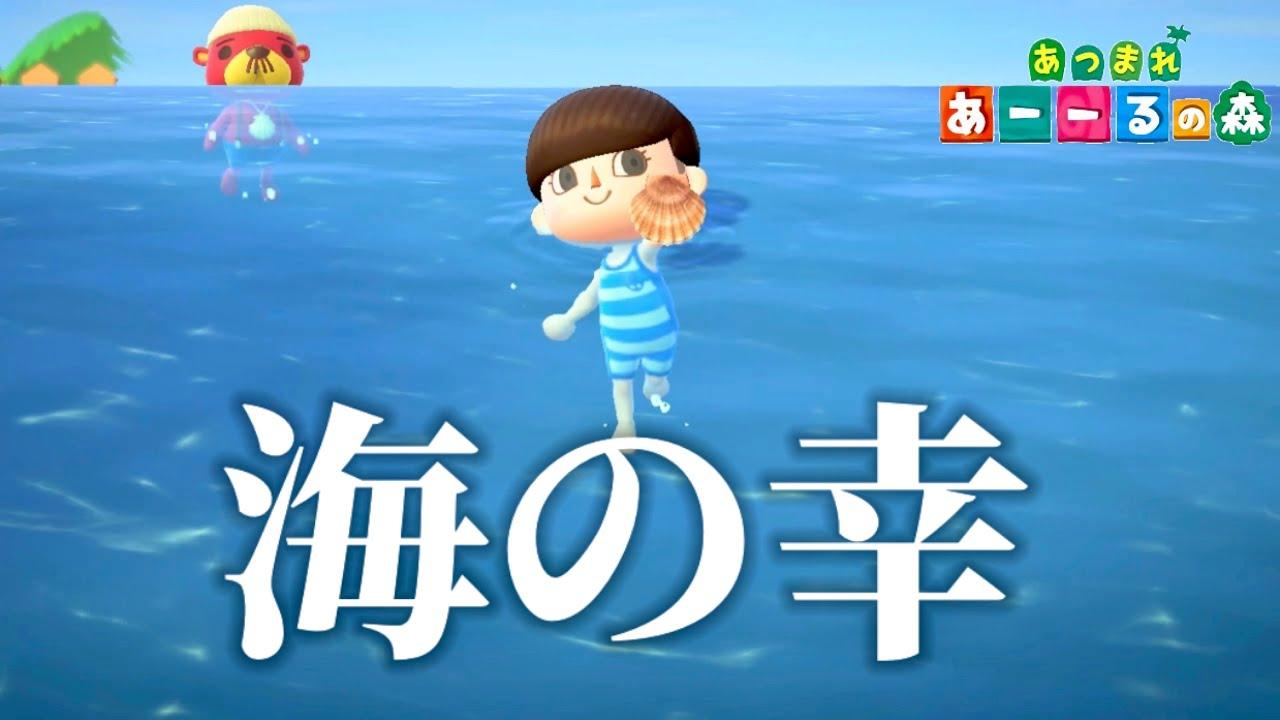 【あつ森】海の幸すべて捕まえてみた。