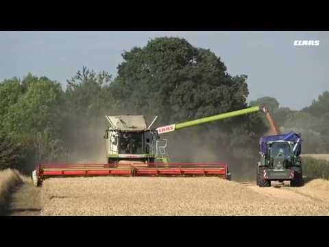 Intelligent Innovation. LEXION 780 TT. Ian Matts, Northamptonshire