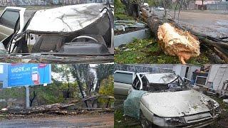 Шторм в Одессе: на Пересыпи дерево упало на проезжающий автомобиль(В Одессе на улице Атамана Головатого 84, большой тополь упал на проезжающий автомобиль - пострадал водитель., 2016-10-12T12:35:39.000Z)
