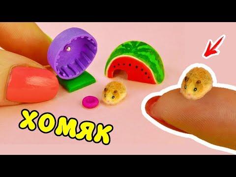 Как сделать хомяка из пластилина