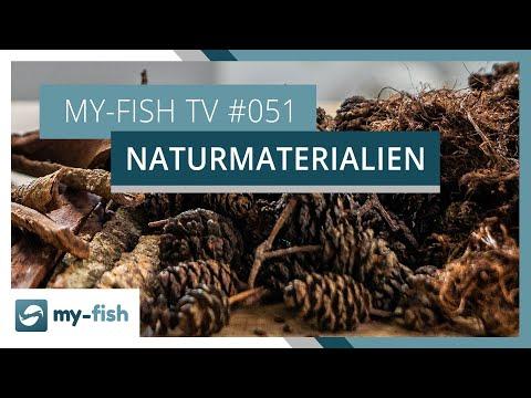 Naturprodukte im Aquarium einsetzen | my-fish TV