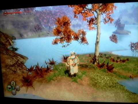 Fable 2 Water Glitch!