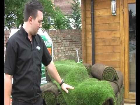 Rolawn Medallion Turf >> Rolawn Medallion Turf From London Lawn Turf