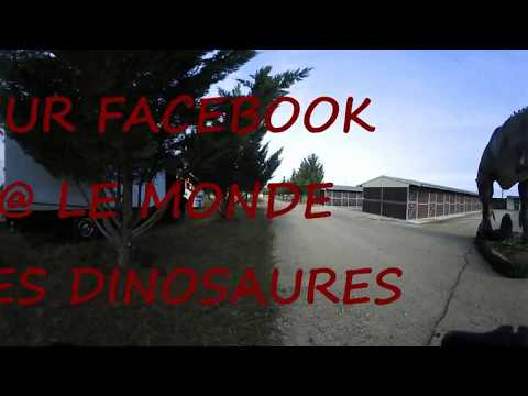 """REPORTAGE VIRTUEL """"le monde des dinosaures"""" en 360°"""