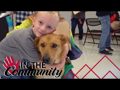 Mountain America Covering Adoption Fees at the Humane Society of Utah to Help Homeless Pets Find New Homes