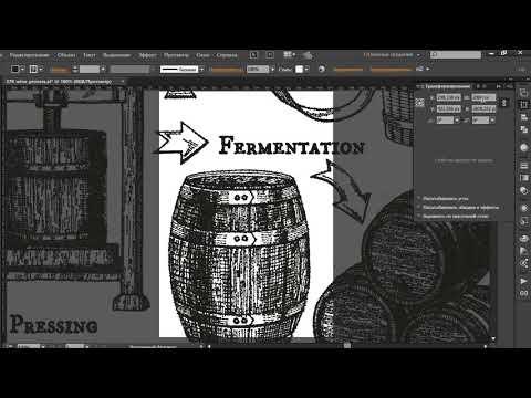 Как изменить размер вектора в Adobe Illustrator на точный размер в пикселях