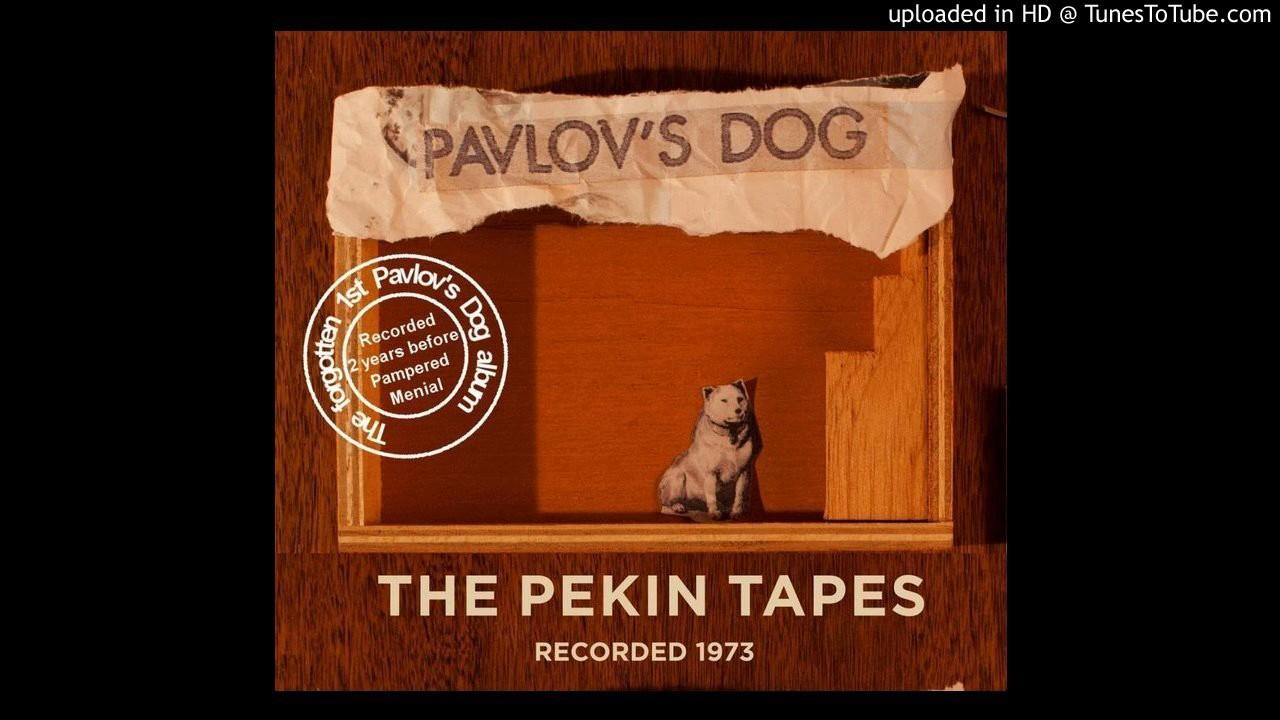 Youtube Pavlov S Dog Band