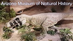Arizona Museum of Natural History | Mesa, Arizona