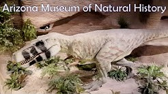 Arizona Museum of Natural History | Mesa, Arizona
