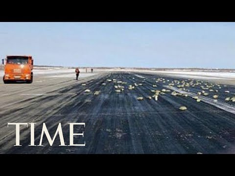 This Russian Plane Was Carrying So Much Gold That Its Cargo Door Burst Open During Takeoff | TIME