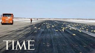 This Russian Plane Was Carrying So Much Gold That Its Cargo Door Burst Open During Takeoff   TIME