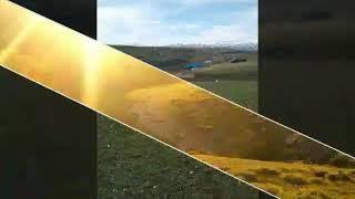 Erzurum Tekman sussuz koyu(2)