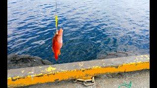 Морские суда Девчачья рыбалка и не только Sea craft