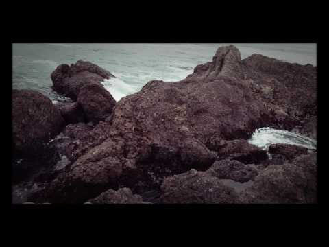 Art of Thought with Miss Larissa: Point Lobos Potluck