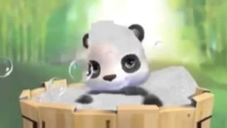 Panda fol shqip