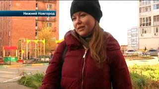 Жители Нижнего Новгорода обнаружили на детской площадке кладбище домашних животных
