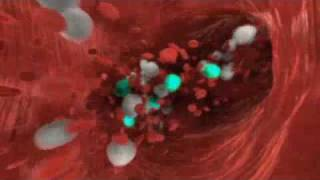 dr faustman s bcg trial info movie