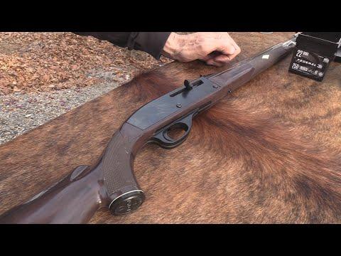 Remington Nylon 66  .22 LR