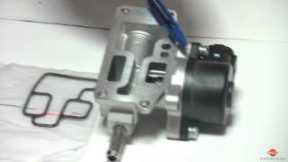 видео Ремонт системы холостого хода на автомобилях Nissan