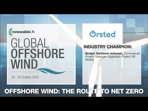 Meet our Global Offshore Wind 2020 Industry Champions from Ørsted