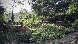 Nationalpark Arenal
