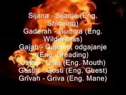 Sanskrit= Serbian