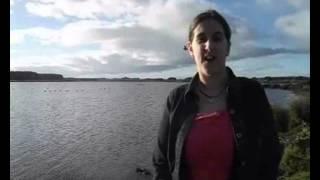 Lake Horowhenua Project