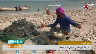 الجبانة في الحديدة ... منطقة ساحرة لايعرفها الكثير من اليمنيين  | صباحكم اجمل