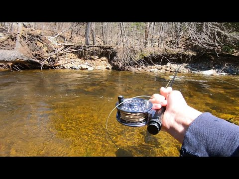5 Fly Fishing Hacks For Beginners