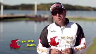 Dean Rojas talks about Big Bite Baits  Warmouth and Cane Thumper