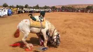 Repeat youtube video The Soninke horseman
