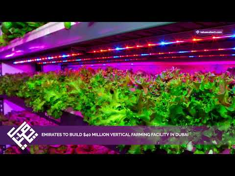 Emirates to build $40 million vertical farming facility in Dubai