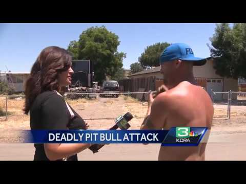 Man attacked by pit bull, dies in Stockton