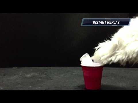 ALS Ice Bucket Challenge Dudley