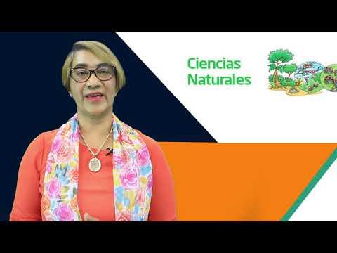 ciencias-de-la-naturaleza-en-la-educación-primaria