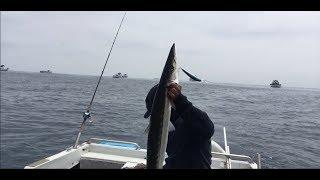 SLOW TROLLING FISHING BARRACUDA BY SQUID SKIRT & FISH LURE