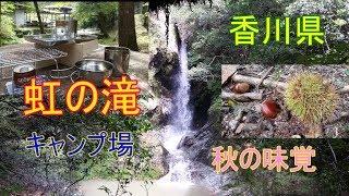香川県「虹の滝キャンプ場」(三木町)で秋の味覚をGET!!
