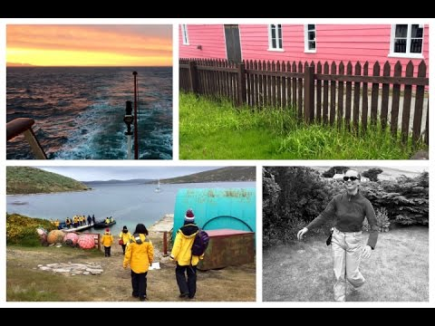 TRAVEL VLOGS #12: Albatross, Superstitions & Exploring Secret Gardens (Falkland Islands)