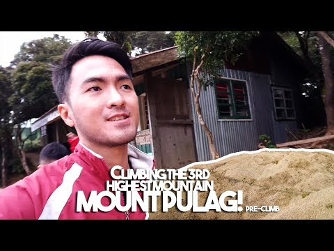 Mt. Pulag: Climbing tips and what to expect (Vlog 17)