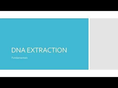 DNA EXTRACTION BASICS