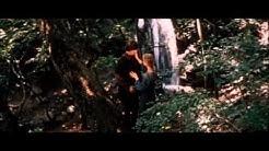 """""""Die feuerrote Blume"""" (1978)"""